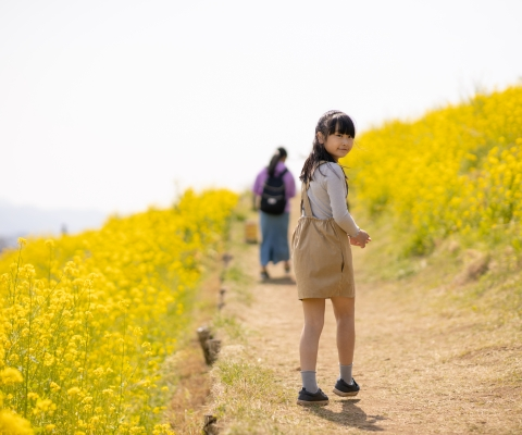 Young girl on wildflower trail