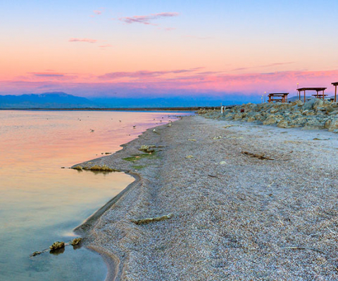2_feb_superlist_saltonsea_thomas-haraikawa.jpg