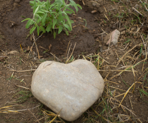 valentine-blog-heart-rock.jpg